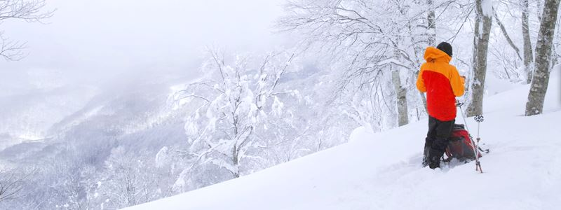 "Madarao Backcountry/Sidecountry ""Half-day Tour"", ""One-day Tour"" and ""Private Tour"""