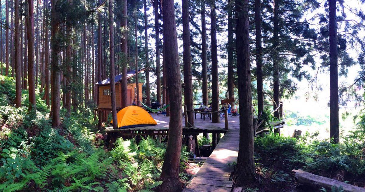 Private tree campsite.
