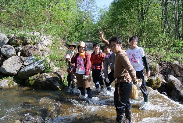 Mountain hiking & SANSAI picking tour