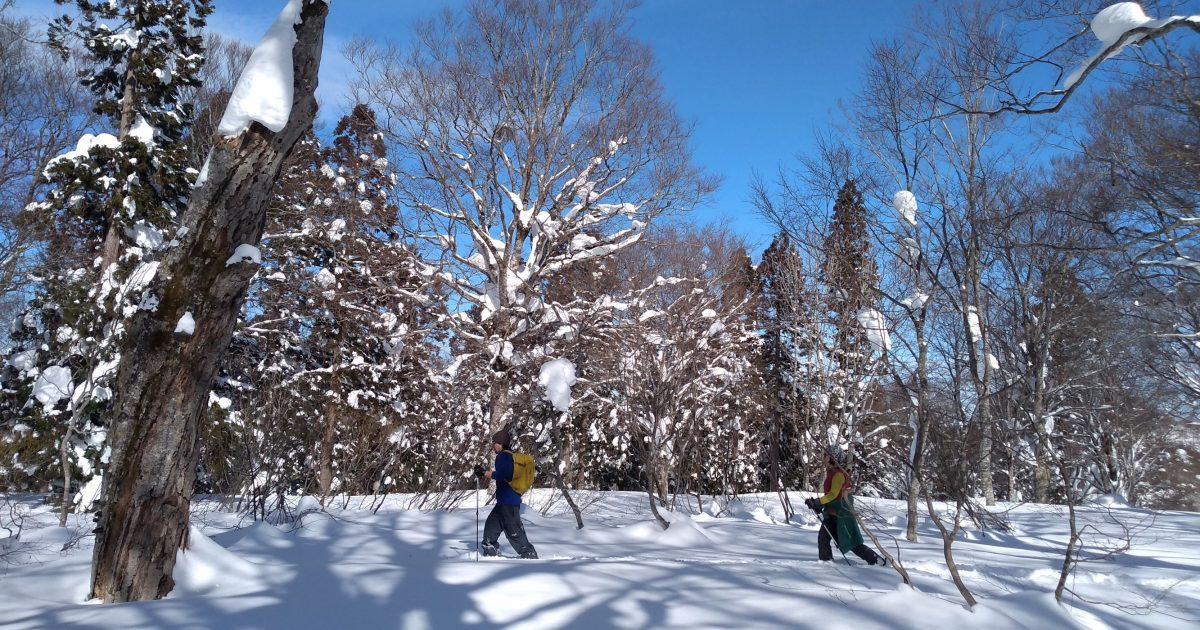 Backwoods ski touring ~ Nozawa Onsen / Lake Hokuryu【Currently not available】