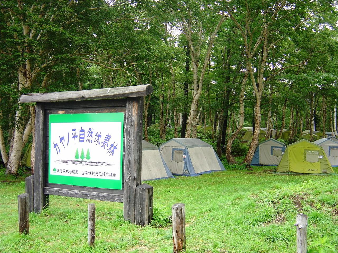 カヤの平キャンプ1